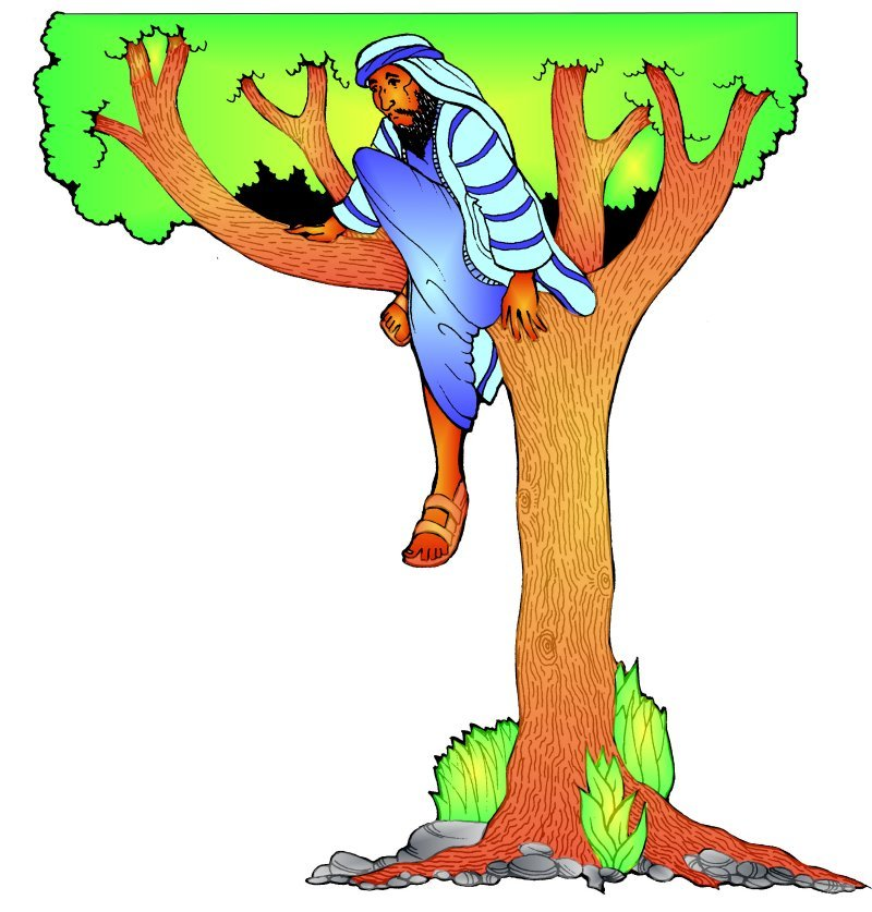reflection for november 3rd 2013 baildon methodist church rh baildonmethodists org Zacchaeus in a Tree Zacchaeus Coloring Page