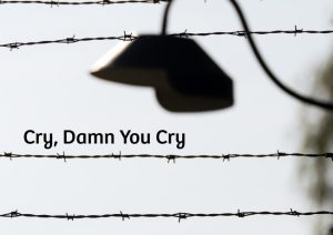 cry-damn-you-cry
